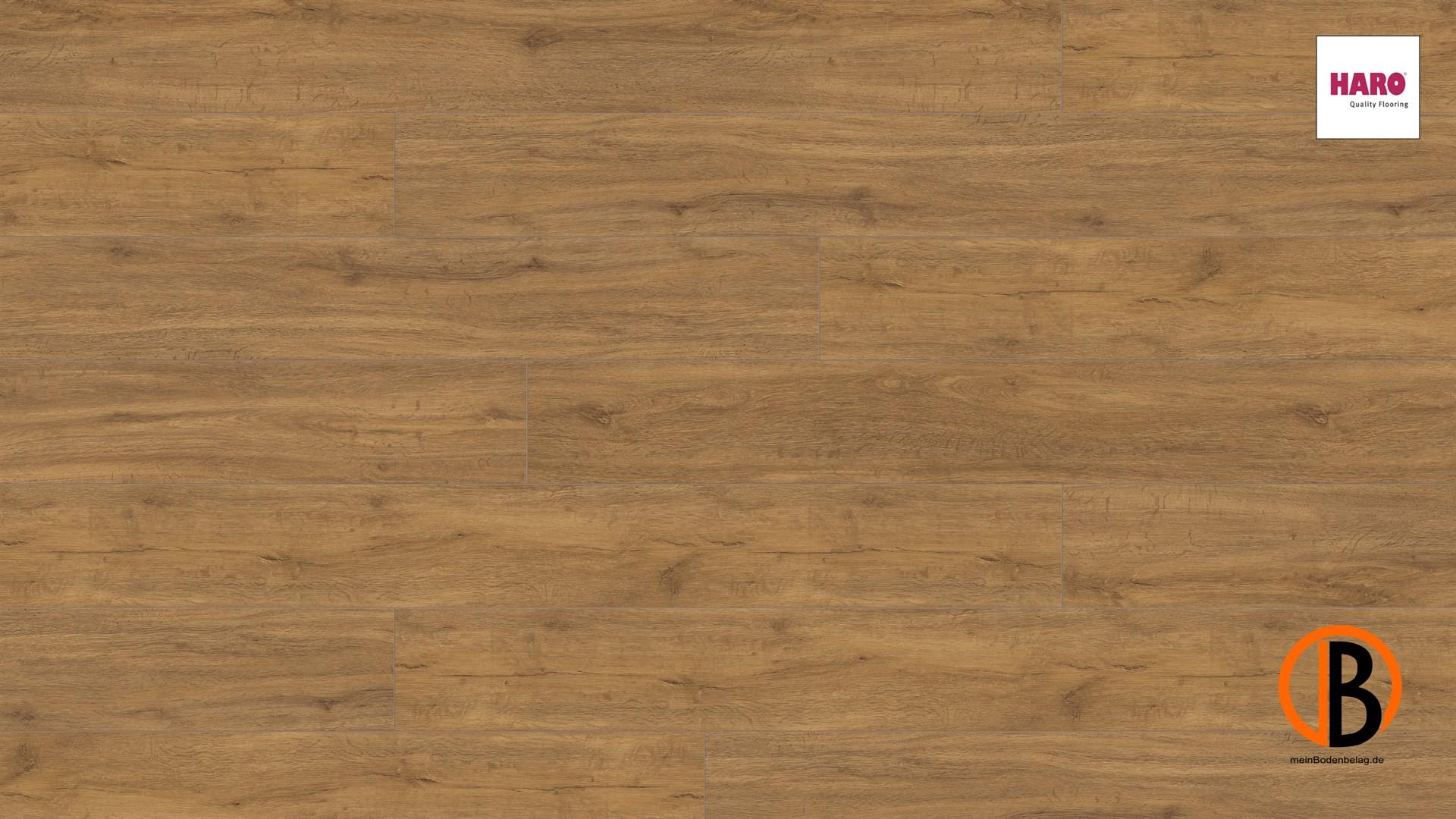 Fußboden Legen Xl ~ Haro disano classic aqua tc la xl v bergeiche strukt