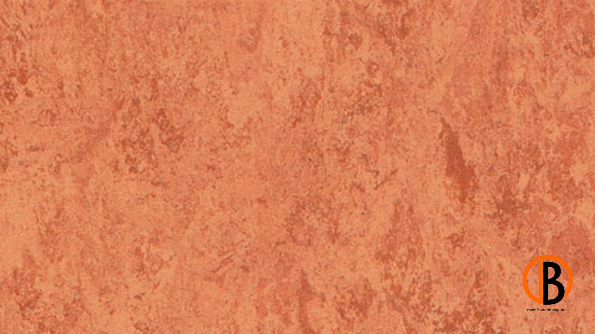 CINQUE KWG LINOLEUM-FERTIGPARKETT PICOLINO | 10000411;0 | Bild 1