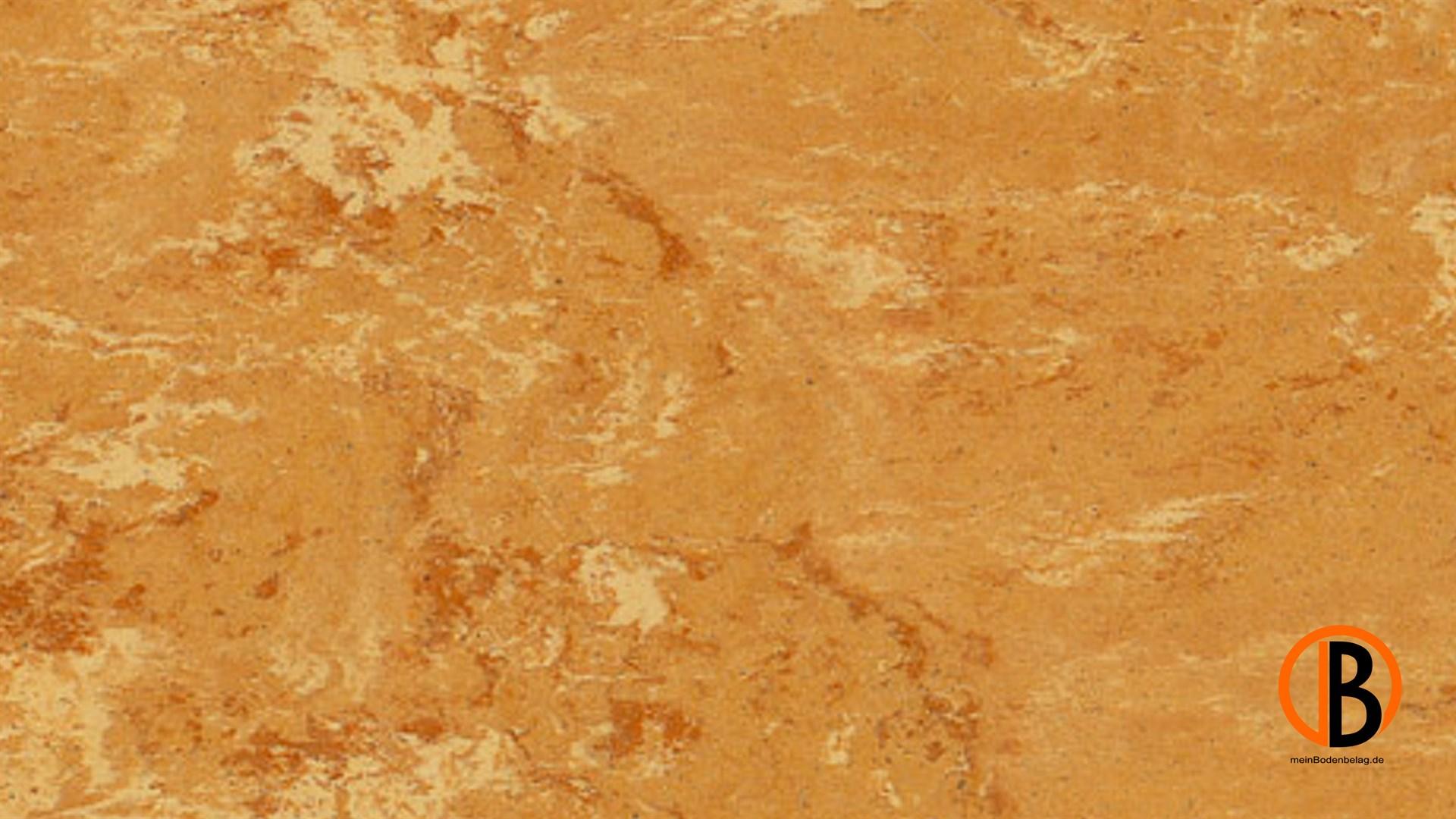 CINQUE KWG LINOLEUM-FERTIGPARKETT PICOLINO | 10000408;0 | Bild 1