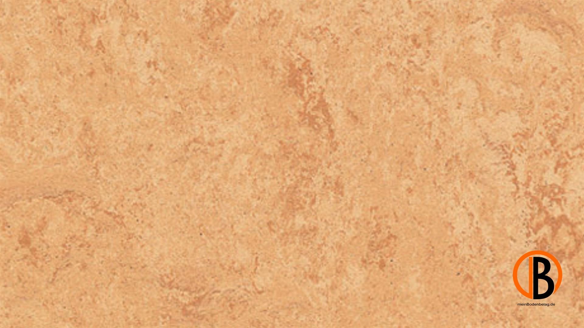 Kwg linoleum fertigparkett picolino peach - Linoleum holzdekor ...