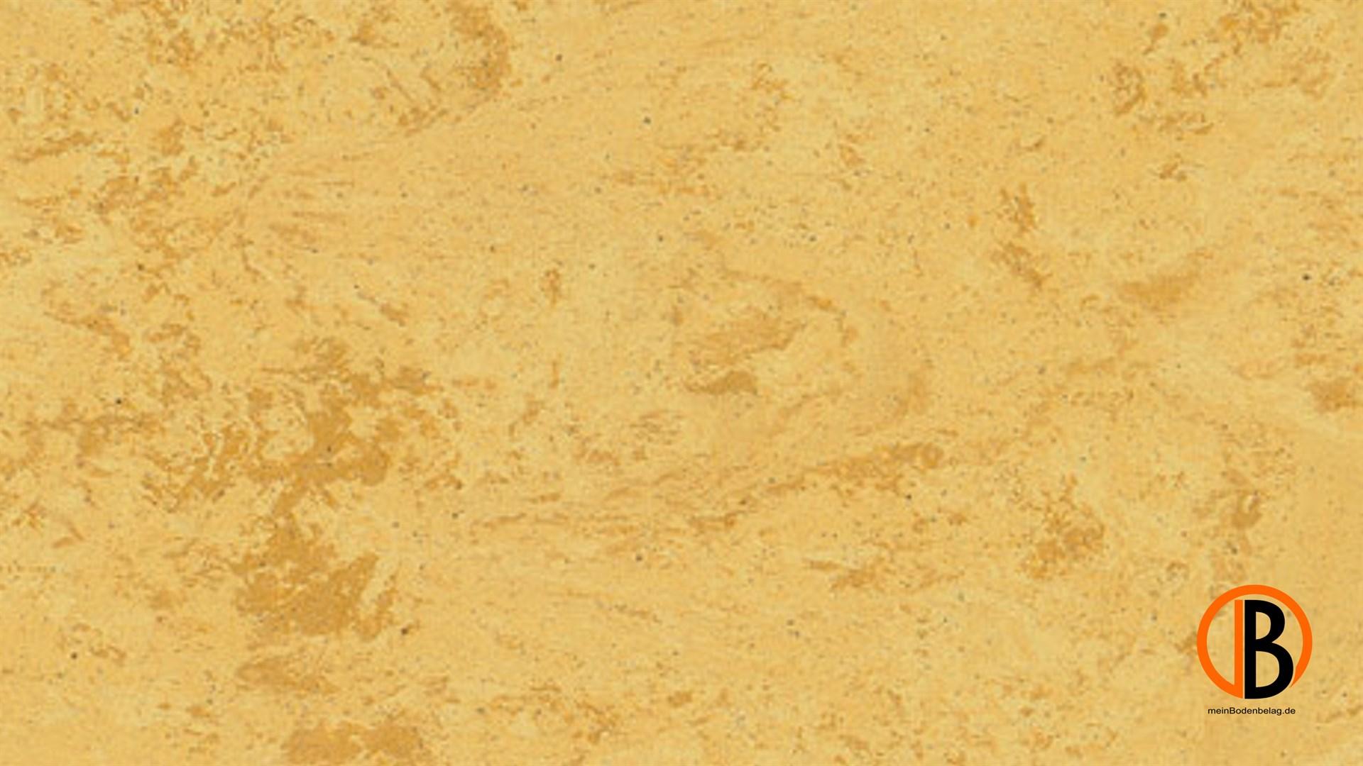 CINQUE KWG LINOLEUM-FERTIGPARKETT PICOLINO | 10000409;0 | Bild 1