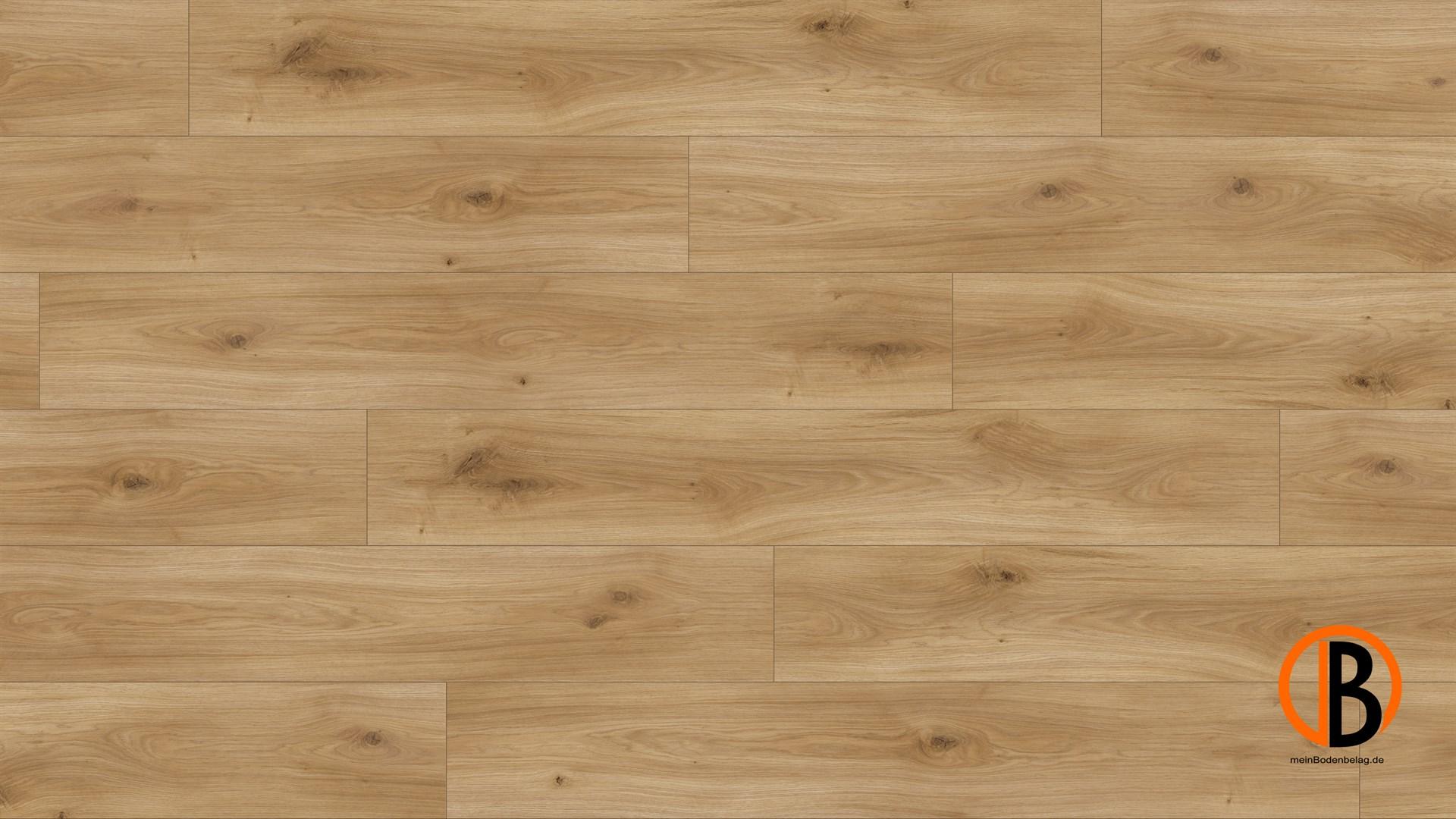 parador laminat basic 400 m4v eiche horizont natur seidem struk lhd minifase. Black Bedroom Furniture Sets. Home Design Ideas