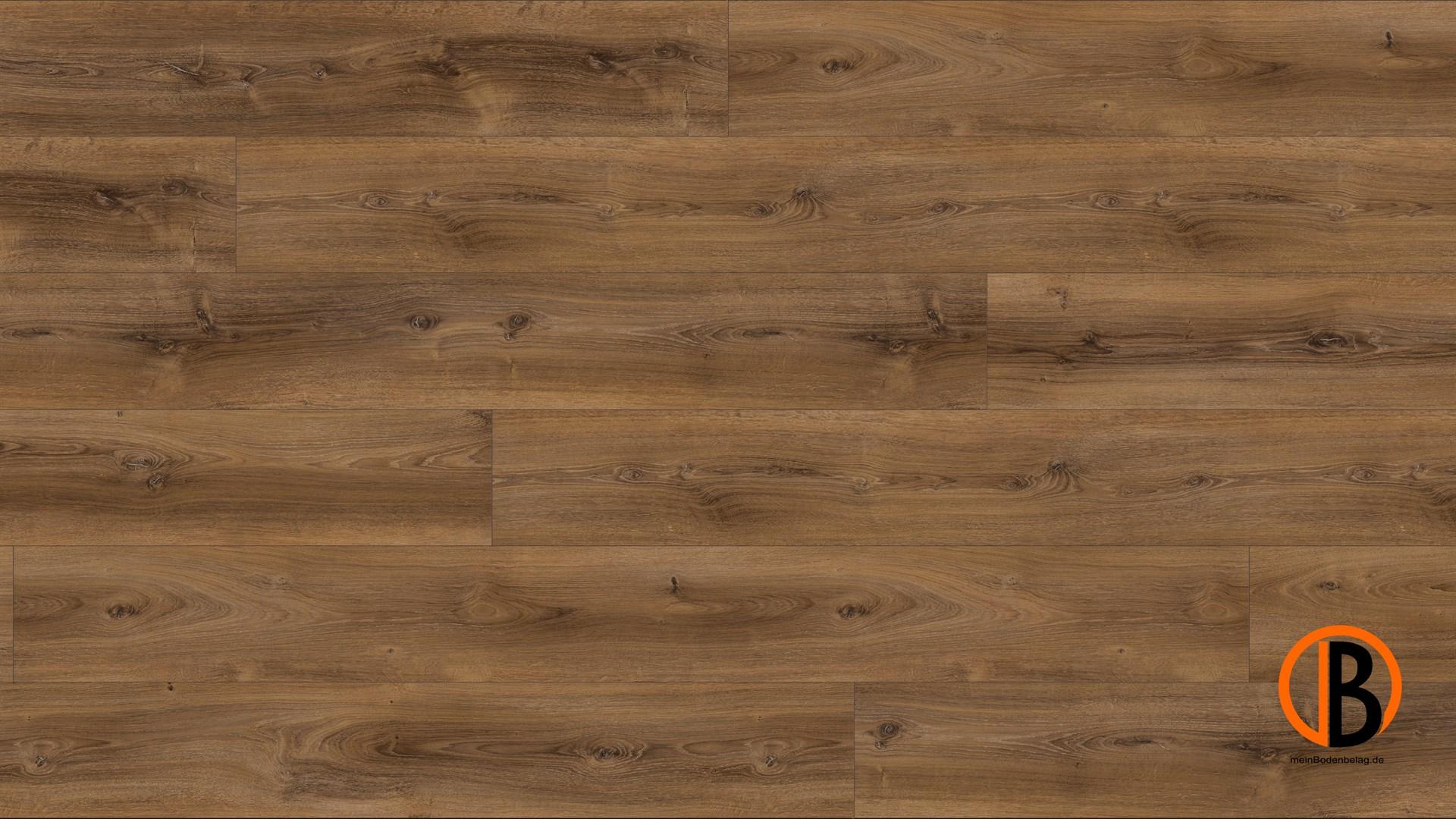 parador laminat basic 600 schlossdiele eiche montana gek lkt naturstruktur lhd minifase. Black Bedroom Furniture Sets. Home Design Ideas