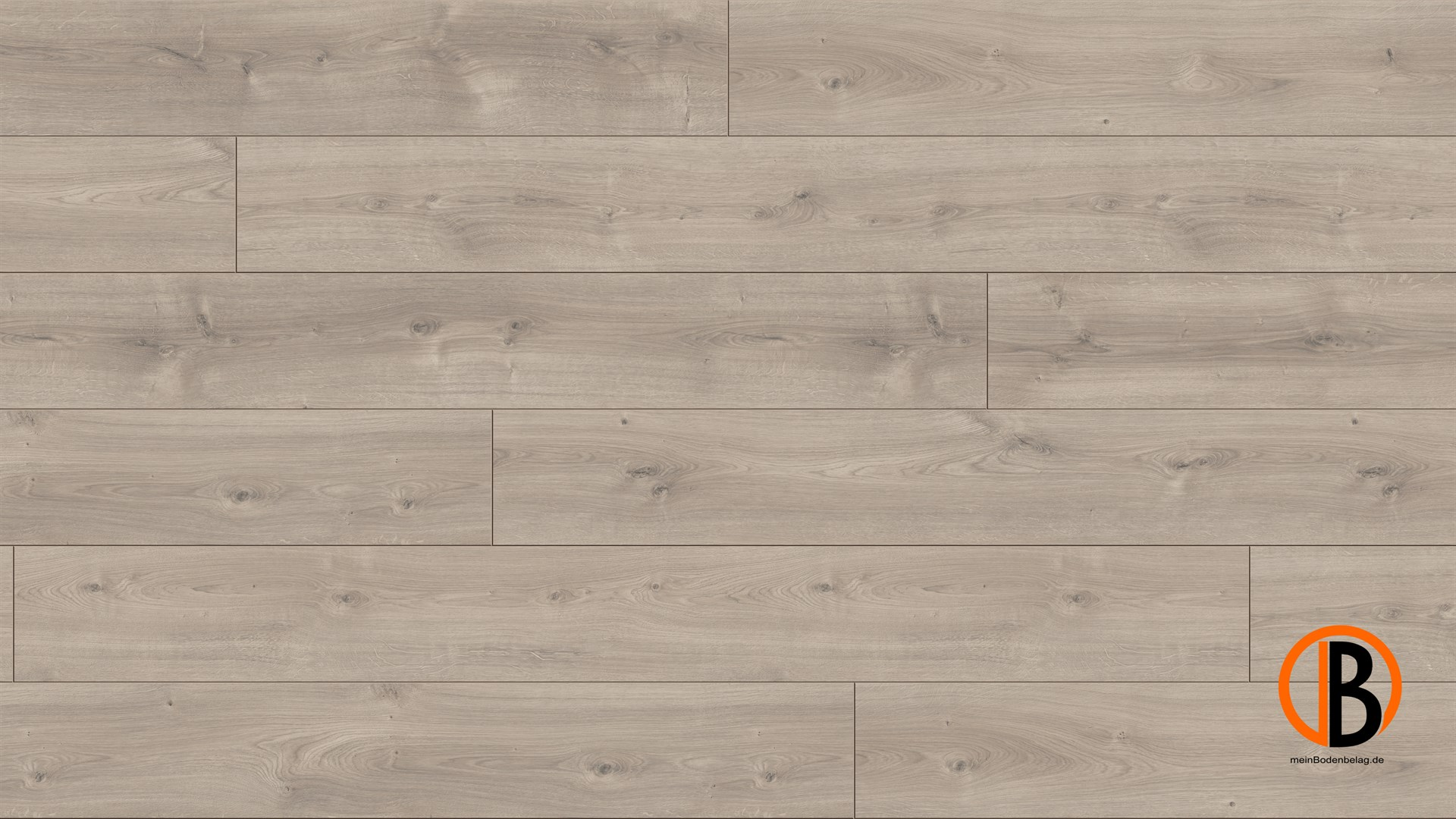 parador laminat trendtime 6 4v eiche mistral grau naturstruktur gefast. Black Bedroom Furniture Sets. Home Design Ideas