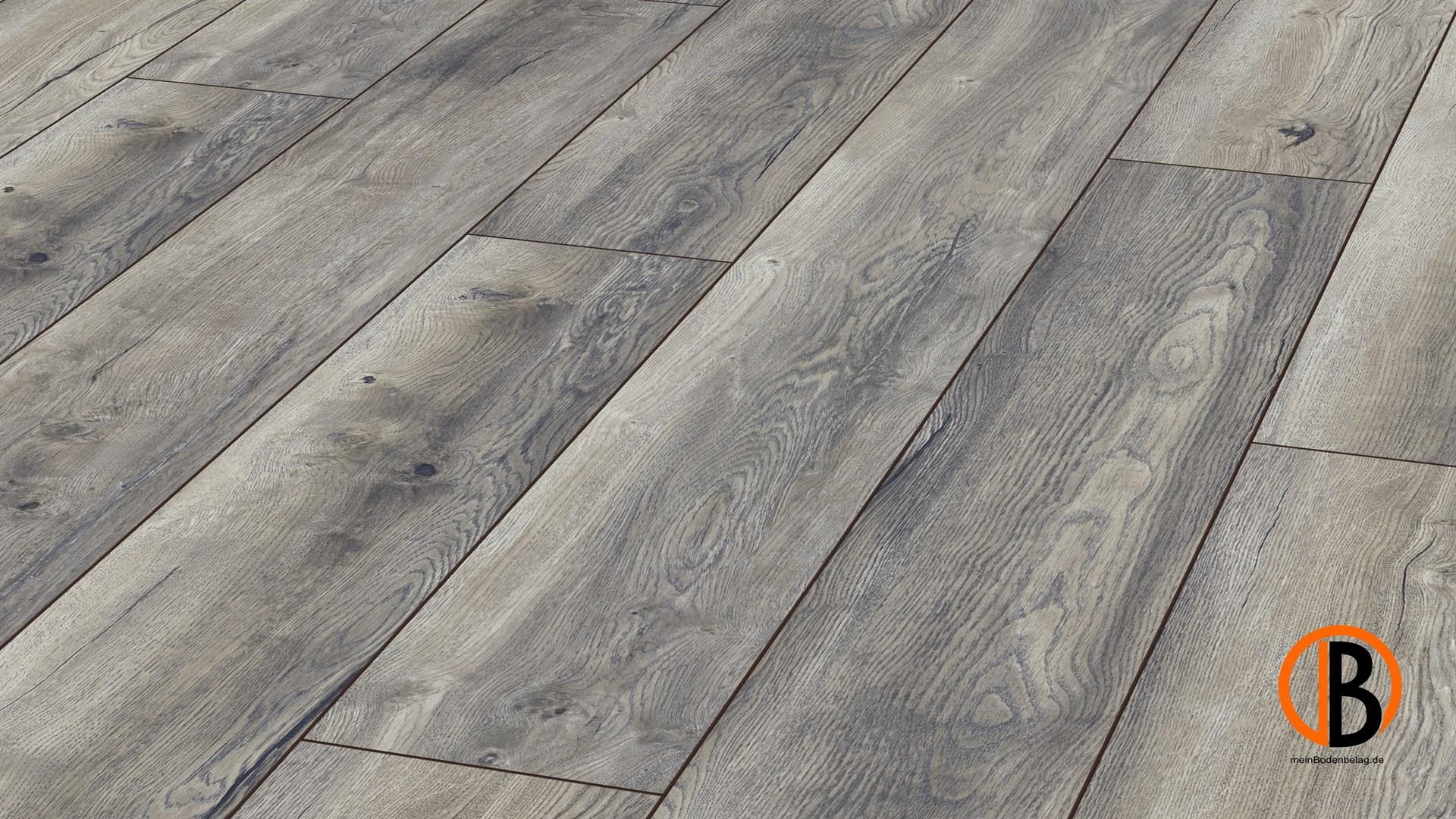 kronotex laminat robusto 3572 harbour oak grau