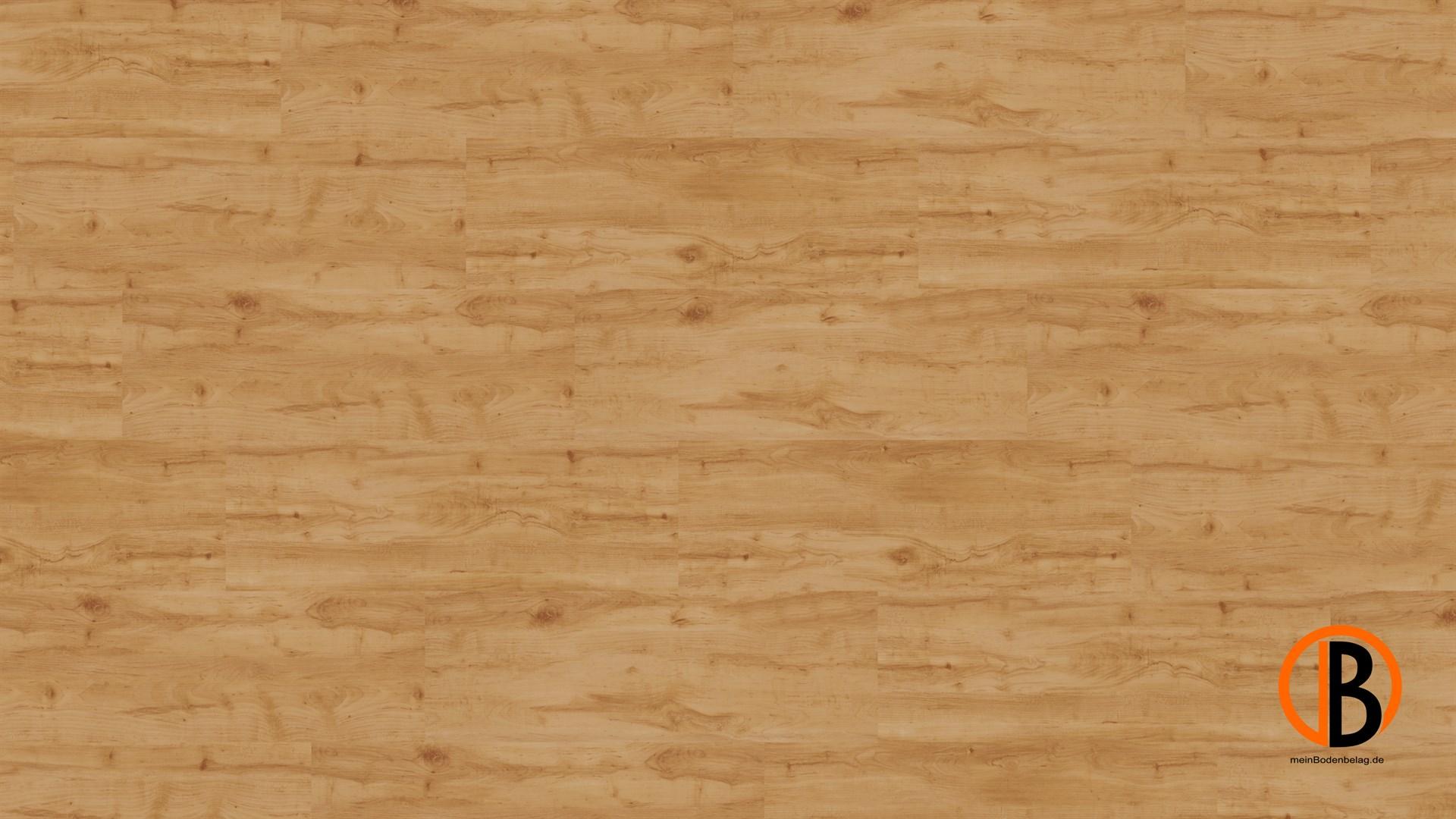 CINQUE KWG KORK-DESIGNBODEN SAMOA HDF | 10000453;0 | Bild 1