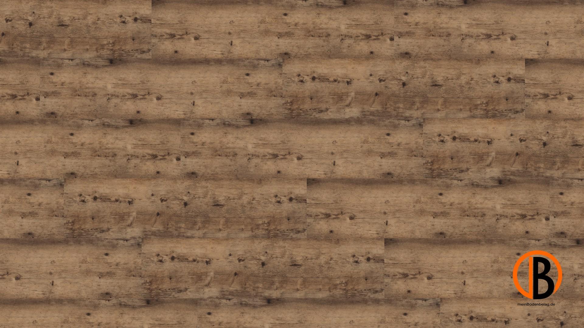 CINQUE KWG DESIGNERVINYL ANTIGUA PROFESSIONAL HYDROTEC | 10000363;0 | Bild 1