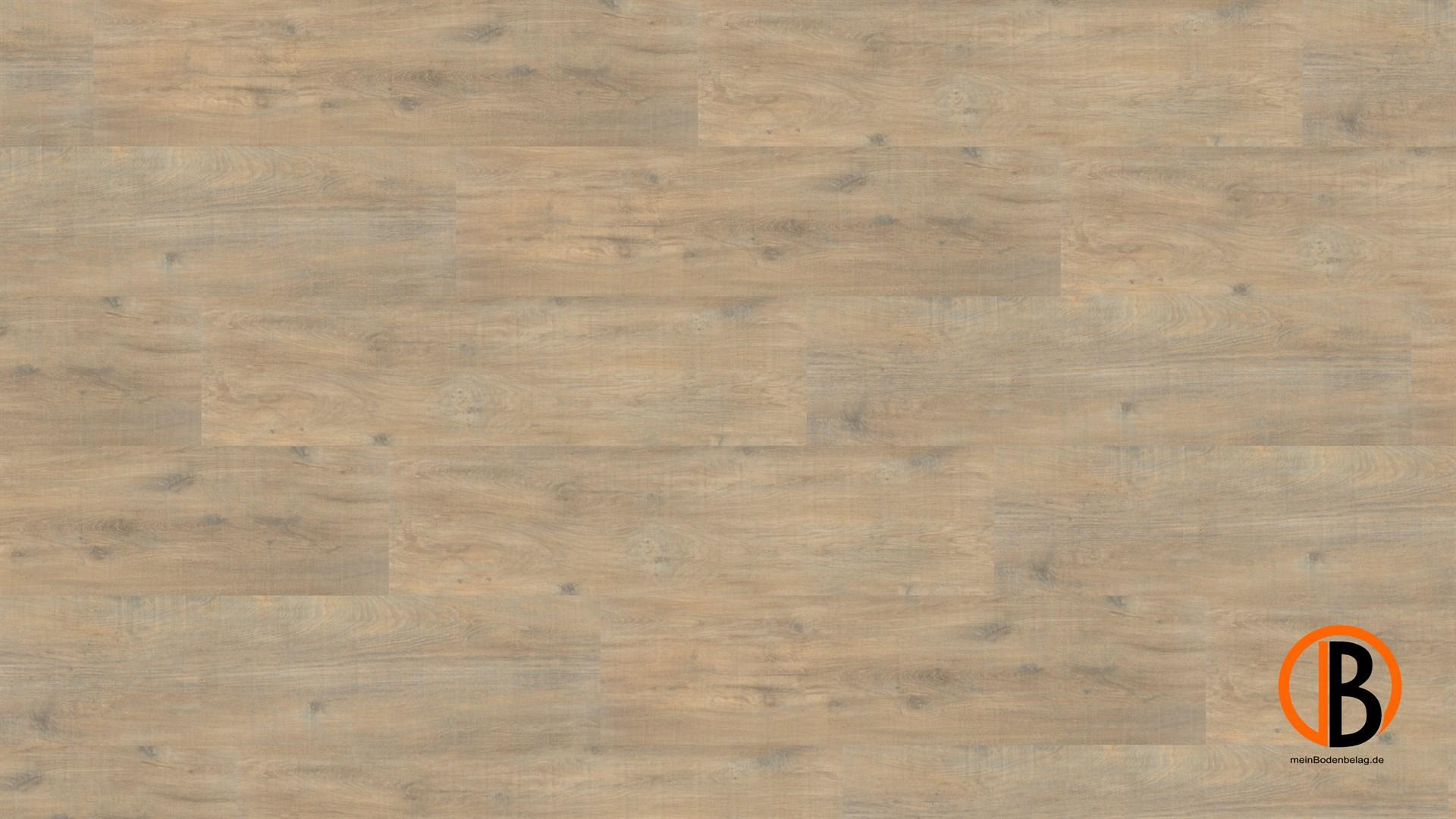 CINQUE KWG DESIGNERVINYL ANTIGUA PROFESSIONAL SHEETS | 10000316;0 | Bild 1