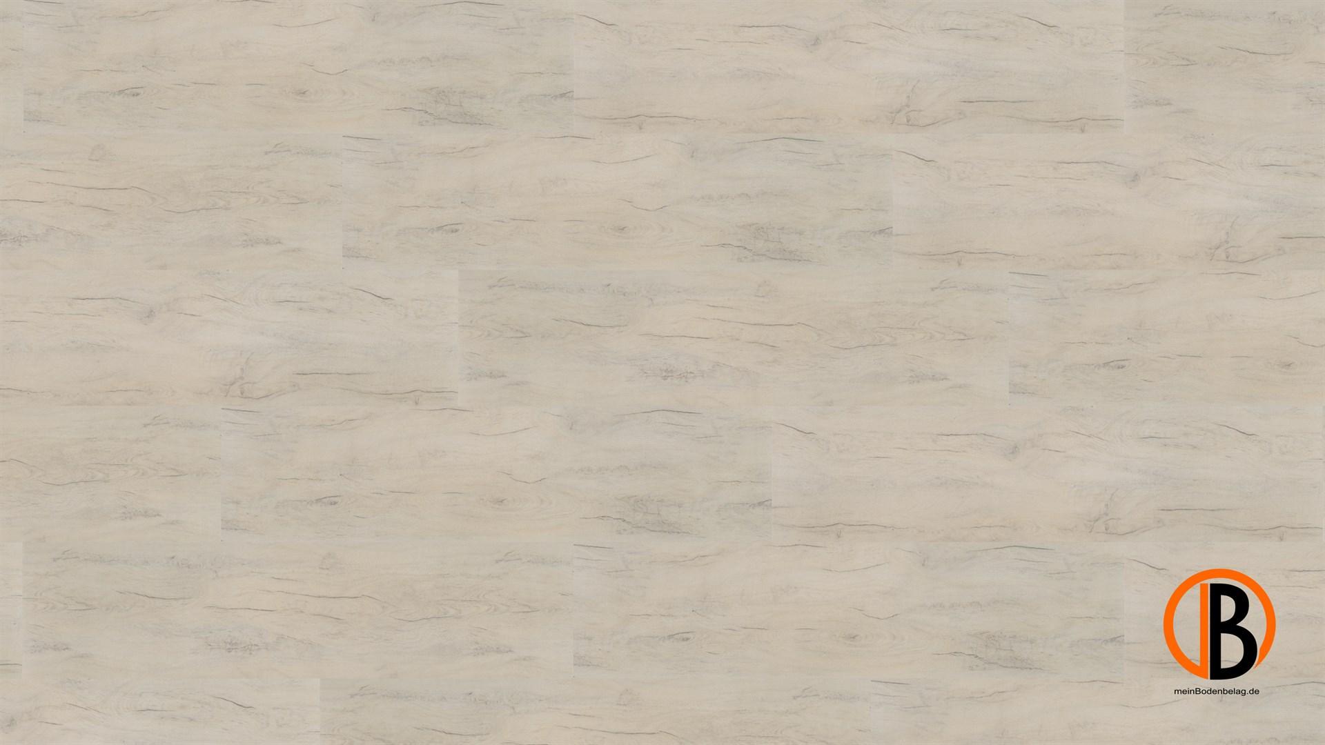 CINQUE KWG DESIGNERVINYL ANTIGUA PROFESSIONAL HYDROTEC | 10000367;0 | Bild 1