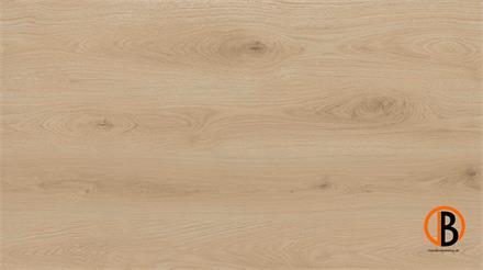 SolidCORE Click-Designboden AGAVE inkl. Trittschalldämmung