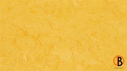 forbo marmoleum click 333251 lemon zest Linoleumboden