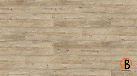 KWG Kork-Designboden Samoa HDF Pinie grau antik