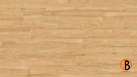 Project Floors Vinyl floors@home/20 PW 1903/20