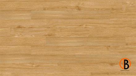 Project Floors Vinyl floors@home/30 PW 1231/30