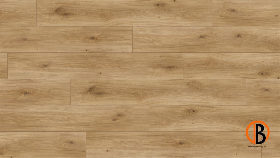 parador laminat basic 400 m4v eiche horizont natur seidem. Black Bedroom Furniture Sets. Home Design Ideas