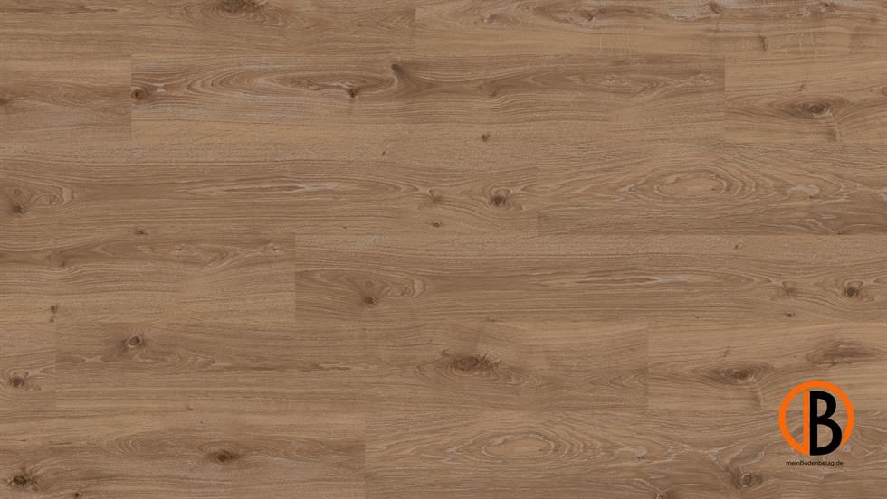 CINQUE PARADOR LAMINAT 1050 | 10000916;0 | Bild 1