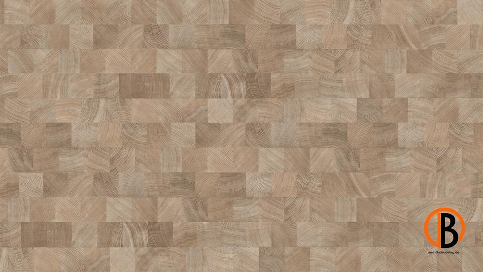 CINQUE PARADOR LAMINAT 1050 | 10000929;0 | Bild 1