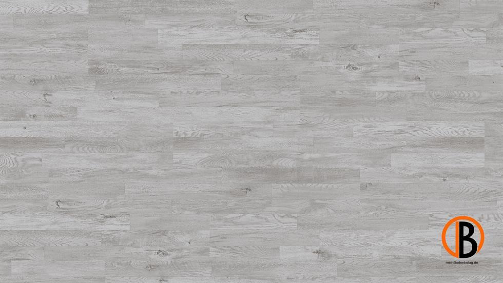 CINQUE PARADOR LAMINAT 1050 | 10000923;0 | Bild 1