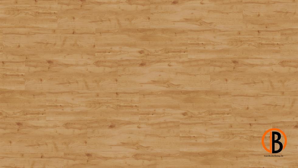 CINQUE KWG KORK-DESIGNBODEN SAMOA SHEETS | 10000485;0 | Bild 1