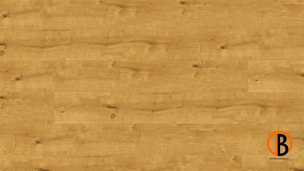 CINQUE KWG KORK-DESIGNBODEN SAMOA SHEETS | 10000489;0 | Bild 1