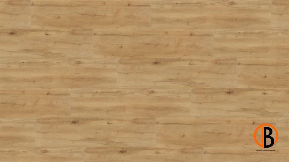 CINQUE KWG DESIGNERVINYL ANTIGUA PROFESSIONAL SHEETS | 10000158;0 | Bild 1